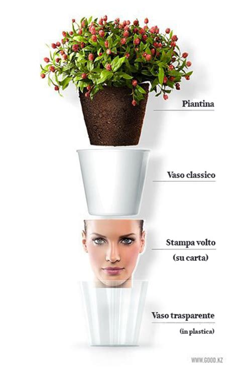 vasi originali vasi originali crea il tuo vaso molto originale
