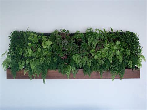 self watering vertical gardens design crush