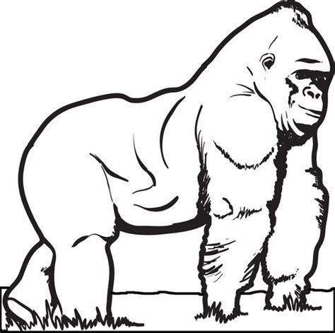 gorilla outline coloring page free printable gorilla coloring page for kids