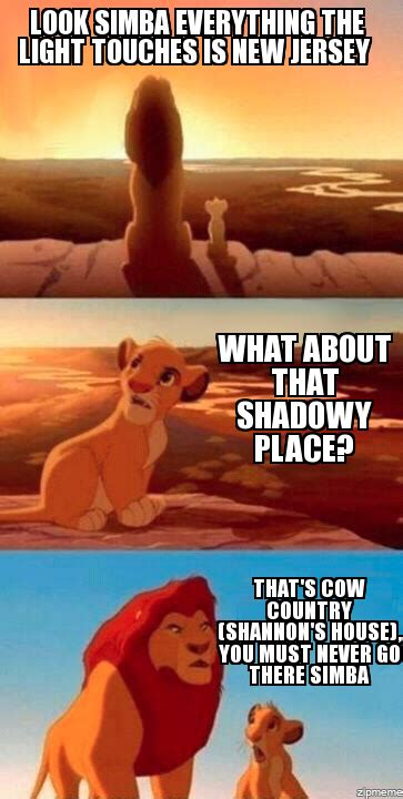 Lion King Meme Maker - lion king meme generator everything the light touches