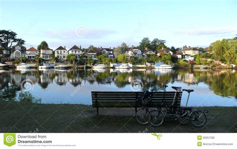 thames river in hindi bicycles near a tree royalty free stock image