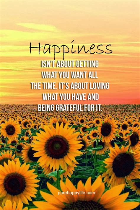 Happiness Quotes About Wanting. QuotesGram