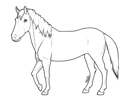 image gallery horse drawings to colour horse lineart by tigressdesign on deviantart