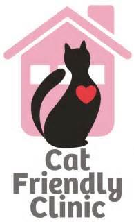 cat friendly accreditation bishopton veterinary