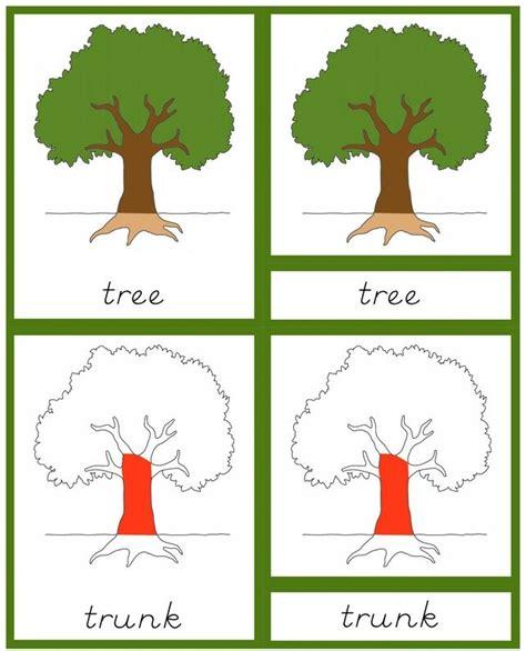 montessori tree printable pinterest the world s catalog of ideas