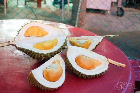 musang king  black thorn showdown durian king bukit