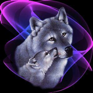 imagenes de lobos llorando animierte tier gifs w 246 lfe gif paradies