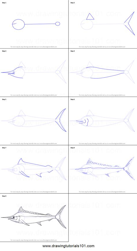 how to draw a black marlin printable step by step drawing