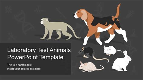 powerpoint templates animals laboratory test animals powerpoint template slidemodel