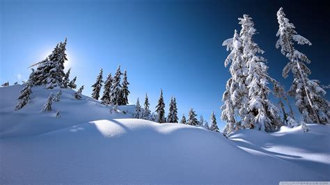 beautiful winter beautiful winter scenery wallpaper