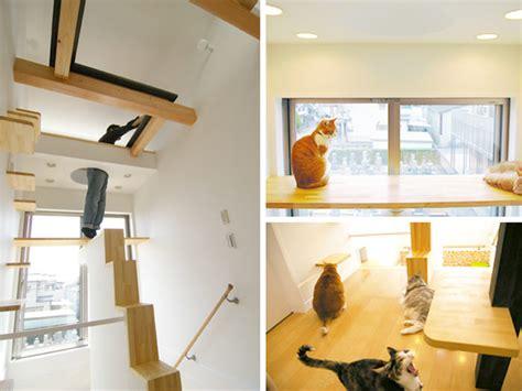 design works home is where the cat is 22 ideias criativas para seu gato labcriativo
