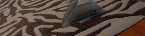 carpet and rug cleaning brisbane rug cleaning brisbane