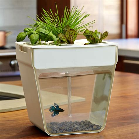 Aquafarm Aquaponic Garden And Self Cleaning Aquarium Fish Tank Planter