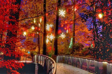 christmas tree atlanta atlanta botanical gardens transformed into winter gac