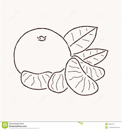 Mandarin Black And White mandarin clipart black and white pencil and in color