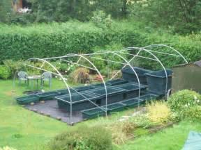 Backyard Tilapia Aquaponics Fish Tanks Excellent Factors To Try Out House