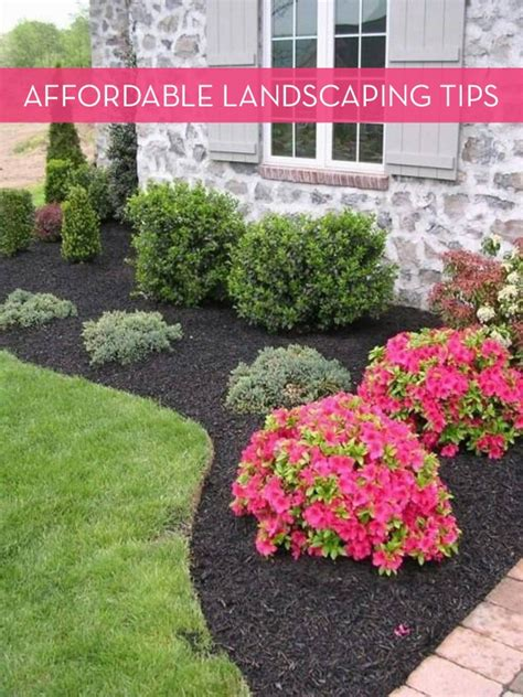 landscaping tips affordable landscaping tips curbly