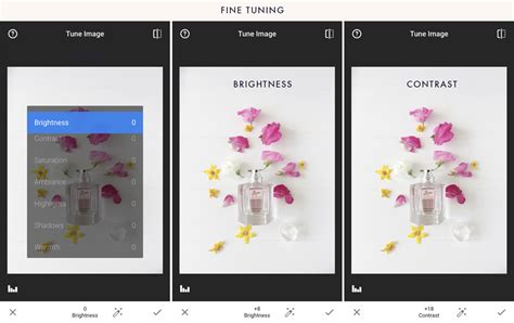 snapseed tone tutorial a step by step tutorial to edit your iphone photos using
