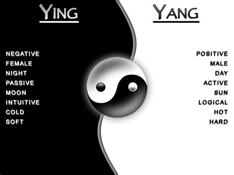 Yin Und Yang Bedeutung by Central Wallpaper Far East Philosophy Ying Yang Meaning