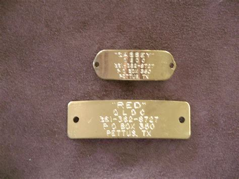 tag on collar brass rivet on collar tag quality leather collars