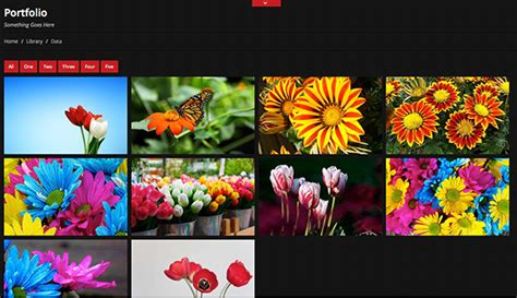photo gallery template html free colorsy html5 website template creative beacon