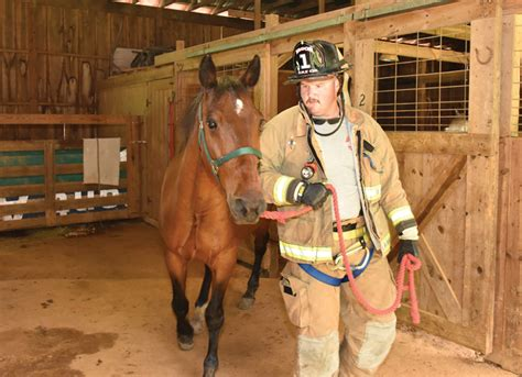 firefighter clinic horses  heroes join