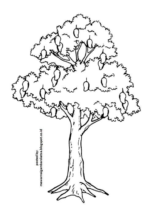 mewarnai gambar mewarnai gambar sketsa pohon 1