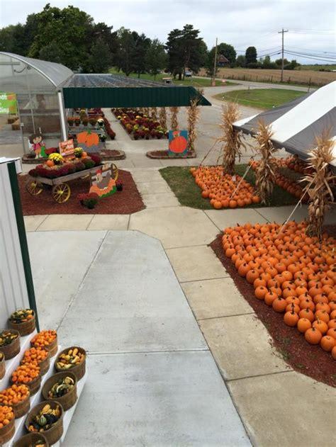 great pumpkin patches  kentucky