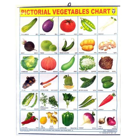 d vegetables name image for all vegetables names in places to