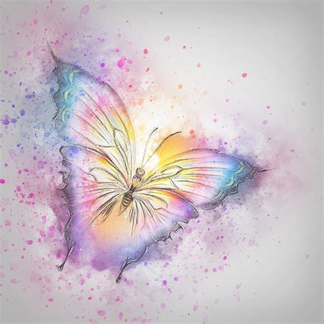 free illustration butterfly insect art abstract free