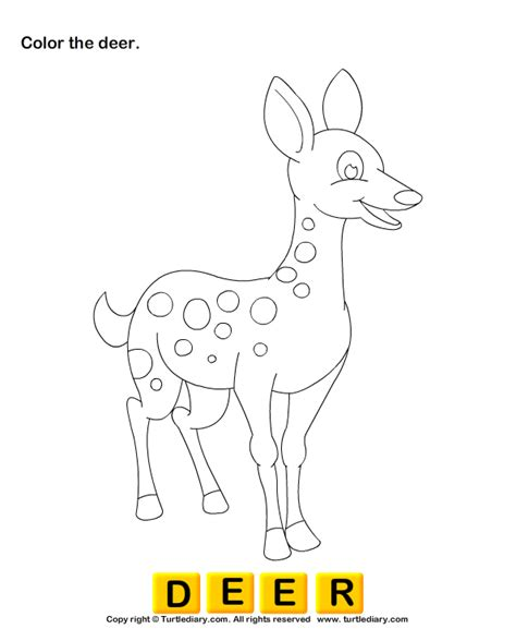 wild animals coloring pages preschool color the wild animals turtlediary com
