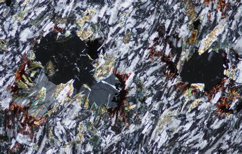 aegirine thin section phonolite from the boca de tauce