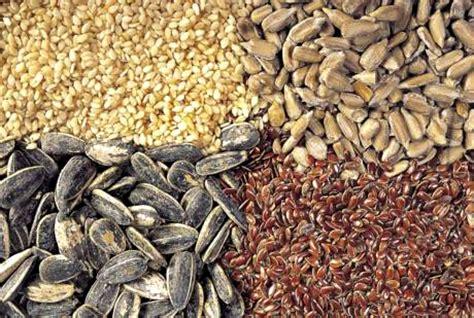 imagenes de semillas varias pregon agropecuario proponen reforma de la ley de