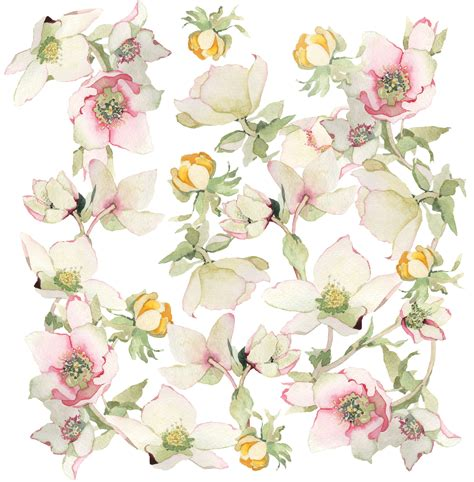 pattern flower png deep cove flowers twist and turn pattern and play
