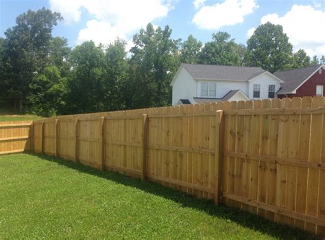 backyard fence for dogs yard dog fence of nashville in nashville tn 37207 chamberofcommerce com