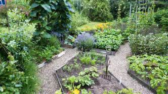 Vegetable Garden Plan A Beautiful Vegetable Garden