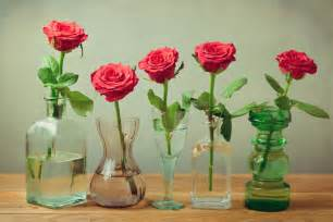 How To Preserve Flowers In A Vase Vodka Aspirin Or 7 Up What Keeps Flowers Fresh