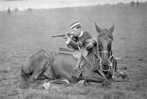 martini henry ww1 historical photos horses in ww1