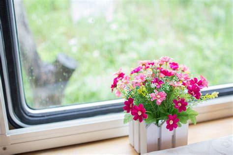 wallpaper flower in pot flower pink pot the window sill window hd wallpaper