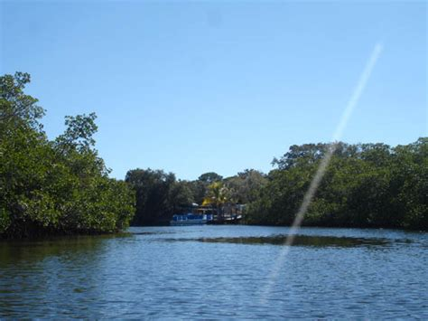 boat tours near englewood florida kayaking charlotte harbor near boca grand or englewood