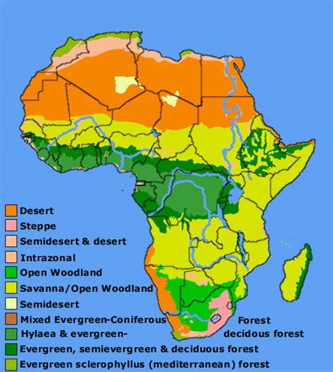 africa map vegetation zones map of africa vegetation zones deboomfotografie