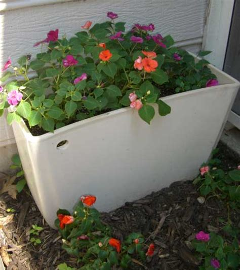 Toilet Flower Planter by Thirsty In Suburbia The Legality Of Toilet Planters