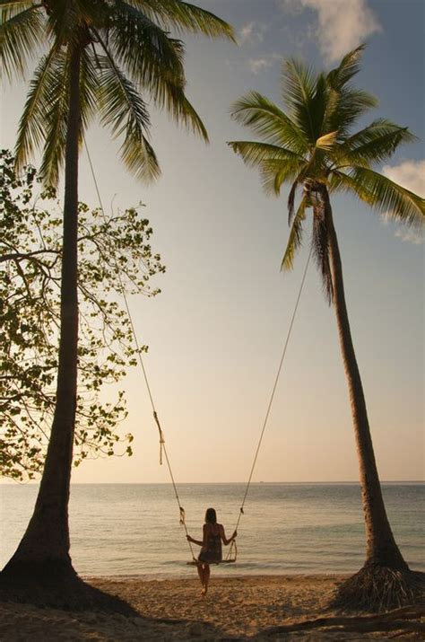 Palm Tree Swing Beach Girl By The Ocean Water In The Sand