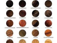 professional hair color professional hair color images frompo 1