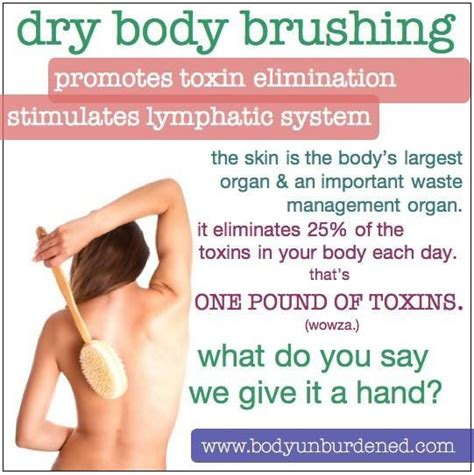 Do Brushing And Showers Detox by Paleo Hair Skin And Brushing Health Diet