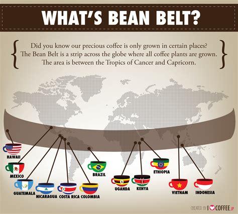 what s bean belt i coffee