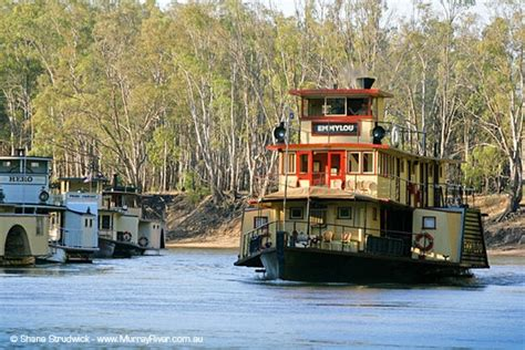 paddle boats canberra lake murray river echuca someday pinterest rivers