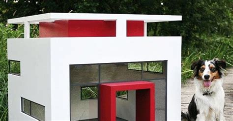 cubix dog house bauhause dog house pet supplies dog news and cool stuff australia