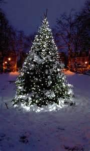 String lights string lights for decorating outdoor garden christmas