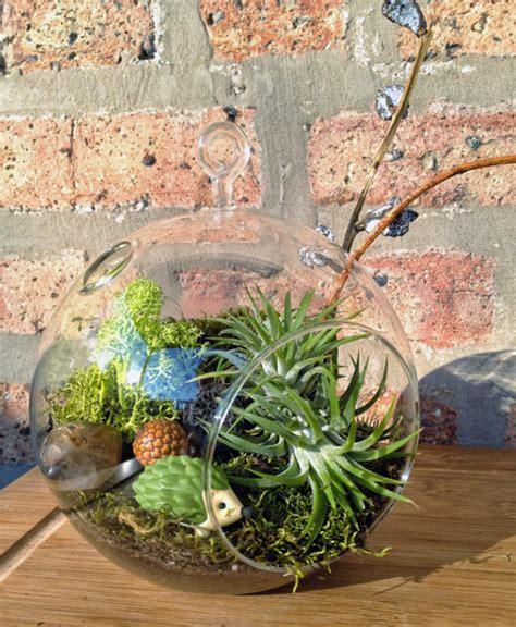 Handmade Terrarium - diy terrariums handmade